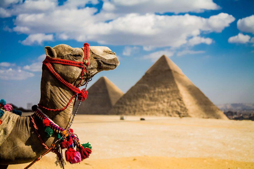 Профессиональные фотографии по всему Египту