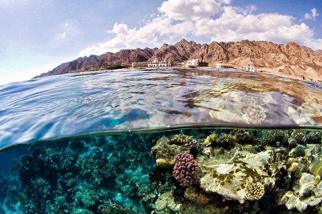 Viaje para practicar snorkeling en Dahab
