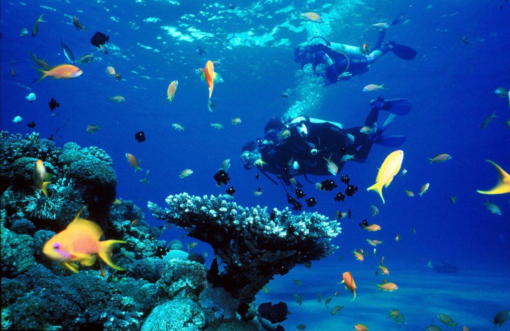 Dykkersteder i Taba