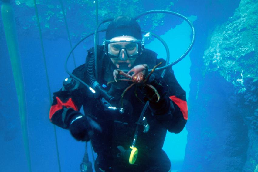 Divemaster Level Course