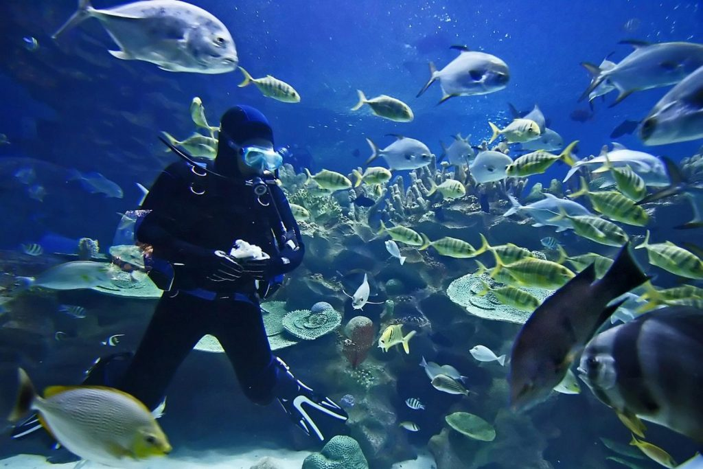 Adventure Diver Level Course