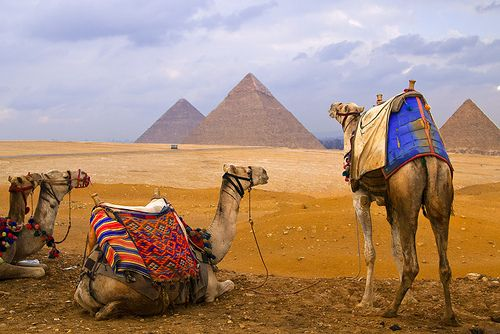 Two Days Trip to Cairo by plane