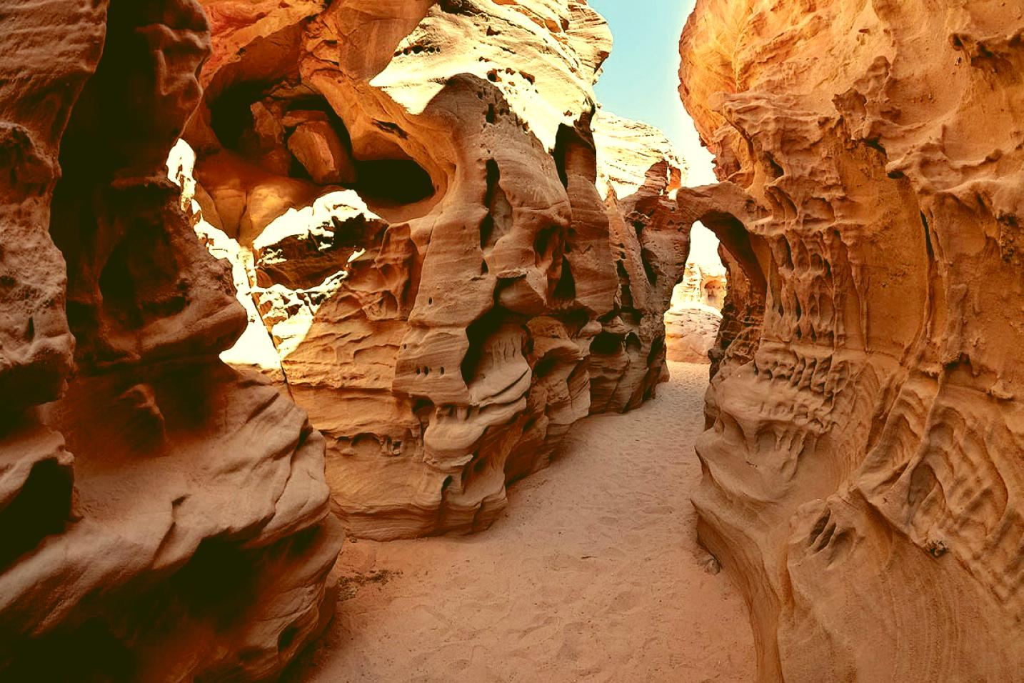 Trip to the Colored Canyon, the White Canyon and the Ein Khudra Oasis
