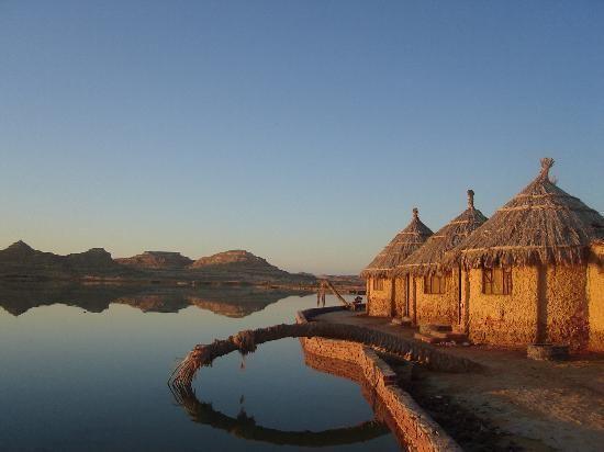 12 giorni Deserto, Oasi e Grotta di Djara con trekking tour nel Deserto Bianco