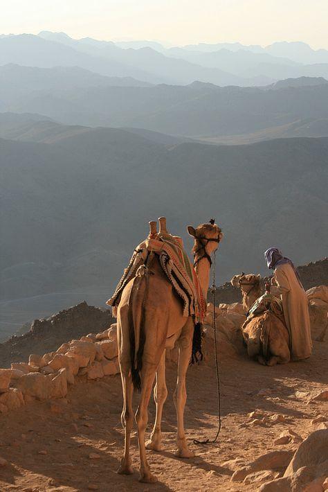 10 giorni Safari in jeep e cammello nel sud del Sinai