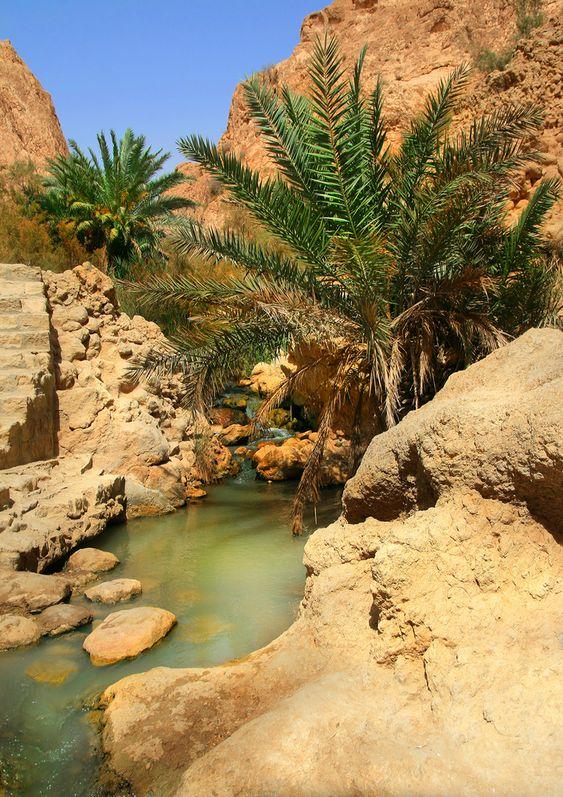13 Tage Durch die Western Desert zum Gilf Kebir - Tour IV